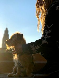 Private dog training san diego